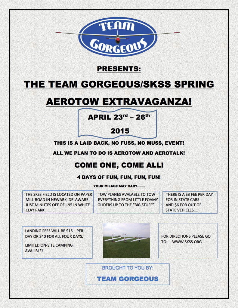 TEAM GORGEOUS FLYER